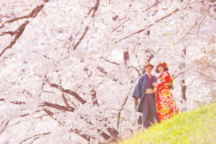 一足先に春を感じる🌸桜フォトウエディング