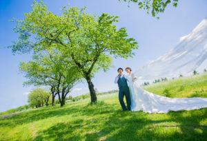 ドレス,草原,ロケーション,撮影
