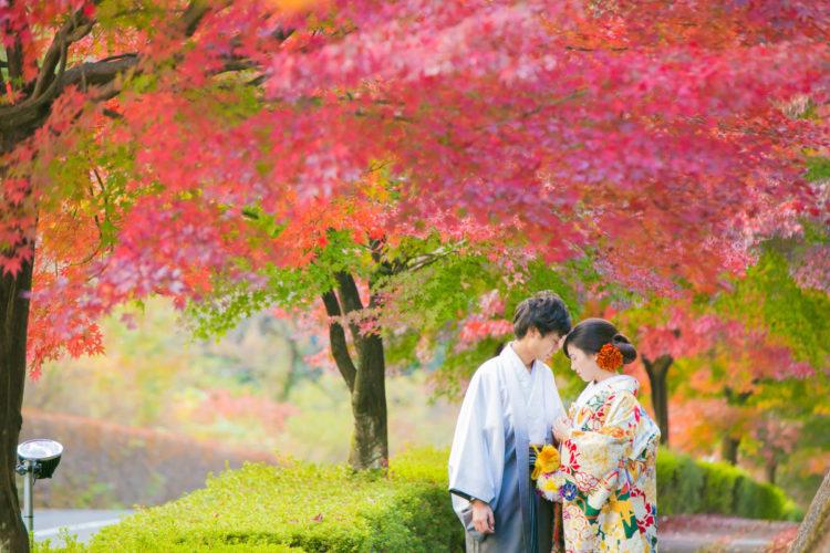 色鮮やかな木々に囲まれて撮影🍁