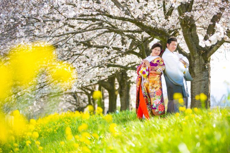 そろそろ桜ロケの写真をアップ!