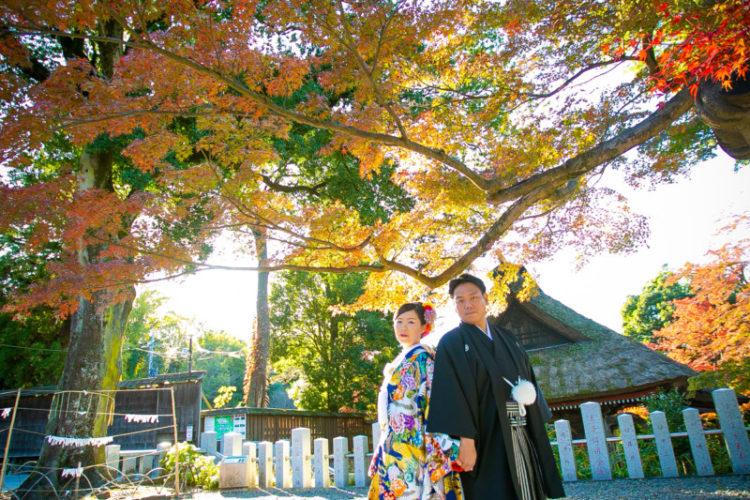少林山 × 紅葉 wedding